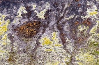 Bodenerosion