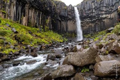 Svartifoss (schwarzer Wasserfall)