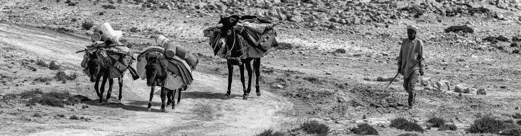 Berber Wassertransport